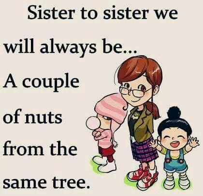 Sister | Sister Quotes | Sister quotes, Sister quotes funny, Big