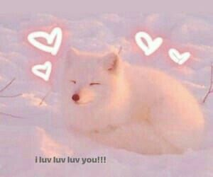 I Miss You Too Akaashi Keiji Special Chapter Messages Cute Cat Memes Cute Love Memes Love Memes