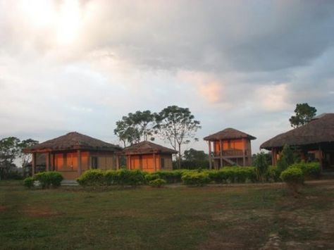 Jia Bhorelli Wild Resort Holiday Rentals In Tezpur An Accommodation Near Nameri National Park Tiger Reserve Potasali House Styles Rafting National Parks