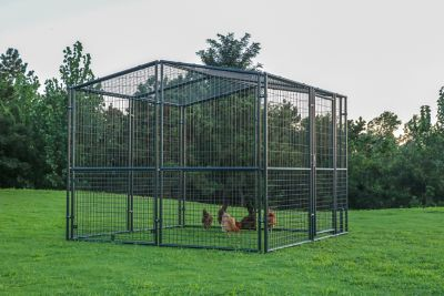 Find Producer S Pride Universal Poultry Pen 8 Ft X 8 Ft Cr0808 In The Chicken Coops Pens Category At Tractor Sup Tractor Supplies Bird House Kits Poultry