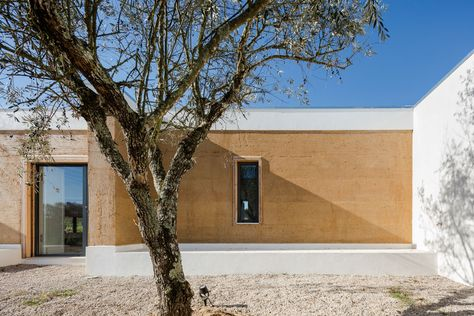 Casa en un viñedo, Herdade do Contador, Portugal - Estudio Blaanc - foto: João Morgado