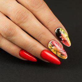 Kwiaty Na Paznokciach Recznie Malowane Arcydzielo W Wersji Mini 3 Nocne Kwiaty Na Paznokciach Recznie Malowane Rozkwit Piekna Almond Nails Nails Pedicure