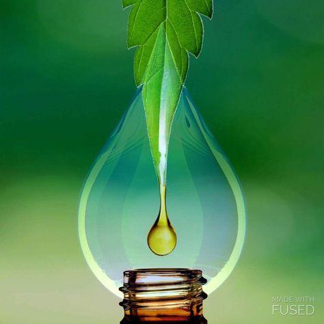 koi cbd vape oil review