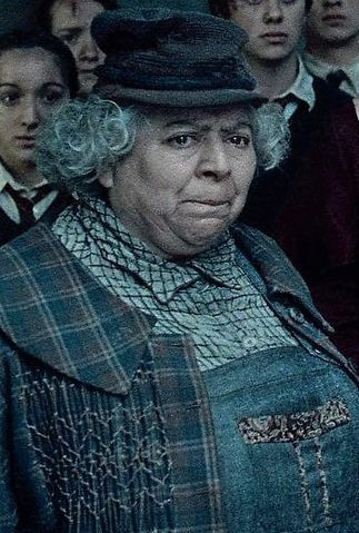 Pomona Sprout Harry Potter Wiki Fandom Powered By Wikia Professores Harry Potter Personagens Harry Potter Serie Harry Potter