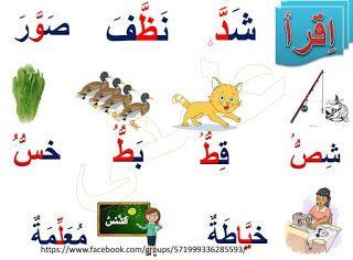 التضعيف في اللغة العربية الشدة دروس و تمارين موارد المعلم Learn Arabic Online Arabic Lessons Teach Arabic