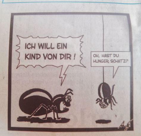 Liebe geht doch immer durch den Magen #comic #lustig #liebe #insekten #spinnen