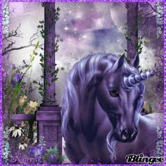Purple Unicorn Fantasy