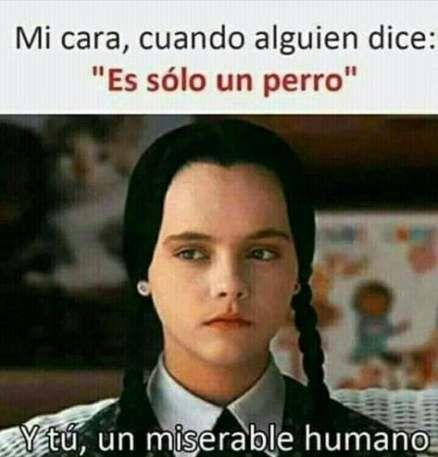 47 Trendy Memes Chistosos Mexicanos Frases Funny Memes Memes En Espanol Memes