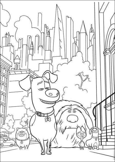 Desenhos Para Colorir E Pintar Para Criancas Pets A Vida Secreta