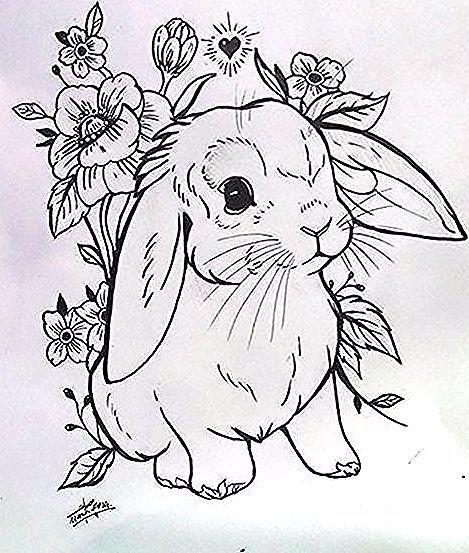 Cute Rabbit Tattoo Design Inspiration For Tattoos Cute Design Inspiration Rabbit Tattoo Tattoos In 2020 Rabbit Tattoos Bunny Tattoos Cute Tattoos