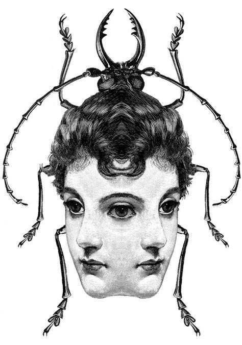metamorphosis black and white symmetrical female beetle ink illustration Dan Hillier, Metamorphosis Art, Arte Obscura, Occult Art, Arte Horror, Art Plastique, Dark Art, Blackwork, Art Inspo