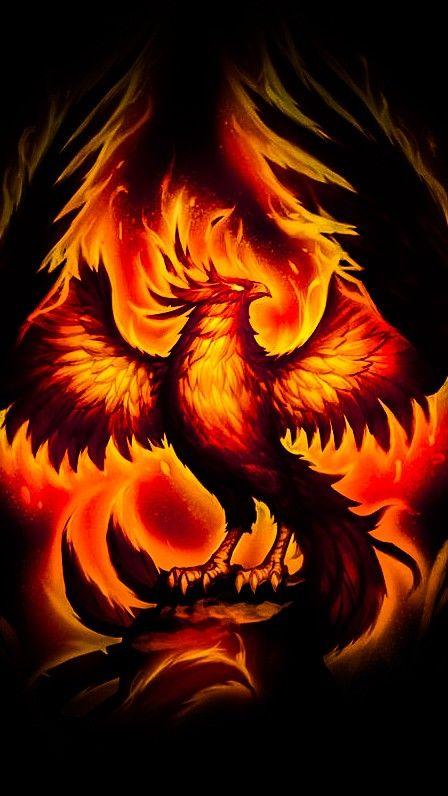 Pin by Ethan Peterson on Wallpapers 2 Phoenix bird Phoenix artwork Phoenix art