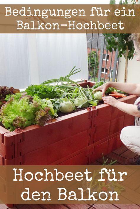 Hochbeet Fur Balkon Selber Bauen Und Bepflanzen 20 Tipps Und Ideen Erhohte Beete Hochbeet Balkon Selber Bauen
