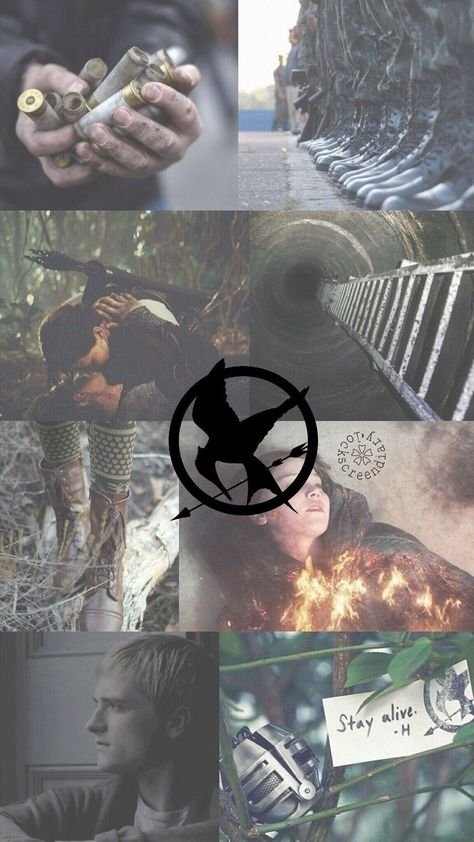 I was looking for the Fandom backgrounds on Wattpad, but have not found a real collection, so I decided to do it myself! Hunger Games Problems, Hunger Games Memes, Hunger Games Fandom, Hunger Games Trilogy, Nerd Problems, Katniss And Peeta, Katniss Everdeen, Wattpad, Hanger Game