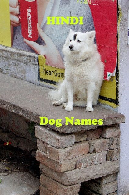 Best Hindi Dog Names From India In 2020 Dog Names Best Dog Names Dogs