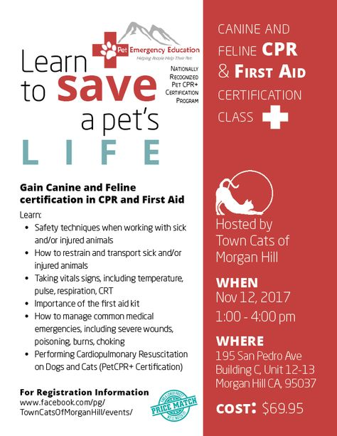 53 Cpr Marketing Ideas Cpr Cpr Training Cpr Classes