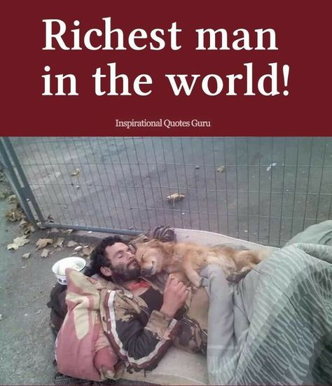 Who said you need money to be rich? Have a dog, and you'll feel like a billionaire