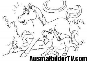 Ausmalbilder Pferde Mit Fohlen Basteln Ausmalbilder Pferde