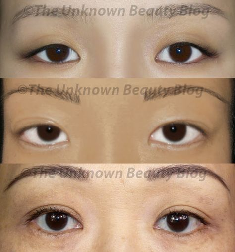 Anatomy Of Eye Shadow Beauty Tips Beginner Eyeshadow Eye