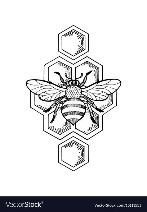 tattoo drawings Bee and honeycombs engraving style Royalty Free Vector Image , Art Drawings Sketches, Tattoo Drawings, Hand Drawings, Doodle Drawings, Bee Sketch, Bee Honeycomb, Honeycomb Tattoo, Bee Drawing, Desenho Tattoo