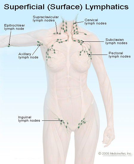 When To Cleanse Your Lymphatic System And How In 2020 Swollen Lymph Nodes Lymph Nodes Lymph Glands