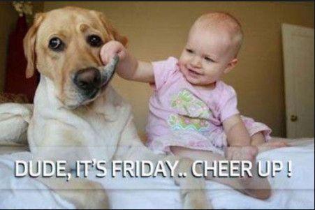 Funny Friday Memes Girls Funny Friday Memes Girls Lustige Freitag Meme Madchen Droles Vendredi Memes Fi Funny Friday Memes Funny Dog Memes Friday Humor