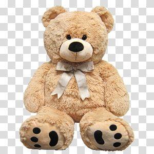 Teddy Bear Stuffed Animals Cuddly Toys Amazon Com Plush Bear Transparent Background Png Clipart Bear Stuffed Animal Teddy Bear Teddy Bear Stuffed Animal