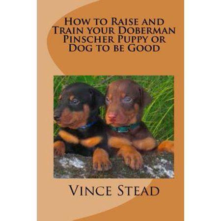 Books Doberman Puppies Doberman Pinscher Dog