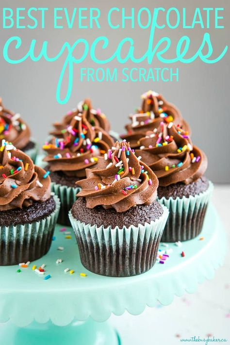 These Best Ever Chocolate Cupcakes from Scratch are the perfect simple chocolate cupcakes - an easy-to-make one-bowl chocolate cupcake batter and super fluffy chocolate buttercream frosting made with melted chocolate. Recipe from thebusybaker.ca! #cupcakes #chocolate #sprinkles #birthday #party #celebration #homemade #fromscratch #birthdaycake