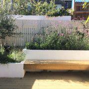 Small London garden. Designed by Tabitha Tarling