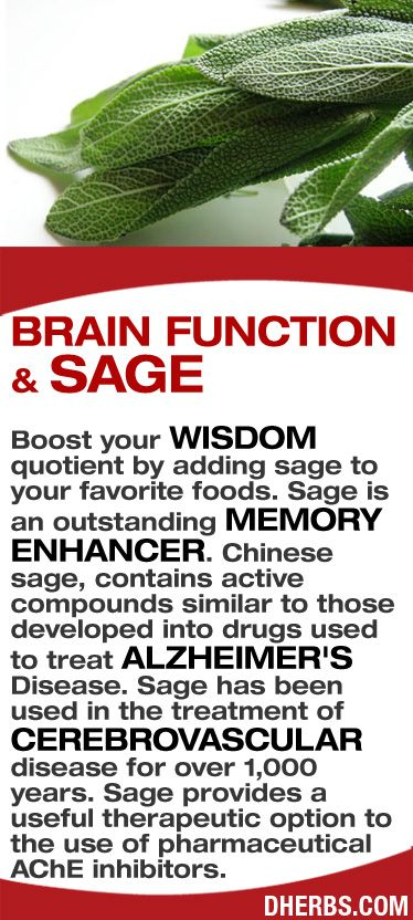 Boost your wisdom quotient by adding sage to your favorite foods. Sage is an outstanding memory enhancer. Chinese sage, contains active compounds similar to those developed into drugs used to treat Alzheimer's Disease. Sage has been used in the treatment of cerebrovascular disease for over 1,000 years. Sage provides a useful therapeutic option to the use of pharmaceutical AChE inhibitors. #dherbs #healthtips