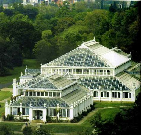 Kew Gardens - Temperate House. The Temperate House is the largest surviving Victorian glasshouse in the world. Covering 4,880 square metres (5,850 square yards) and extending to 19 metres (63 feet) high.