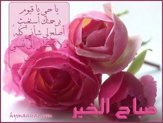 صورصباح الخير رومانسيه 2019 صور صباح الخير للحبيب Rose Flowers Plants