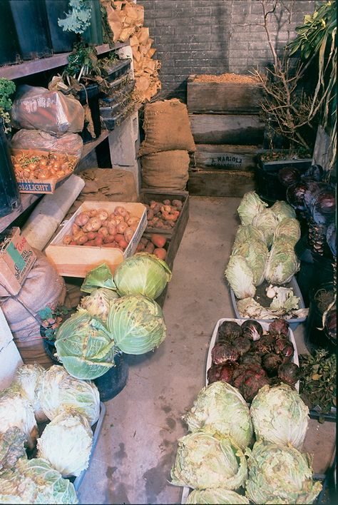Fresh food storage root cellar 30 ideas for 2019 Canned Food Storage, Food Storage Rooms, Potager Bio, Vegetable Storage, Larder, Homestead Survival, Survival Tips, Farm Gardens, Preserving Food
