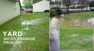 Image result for yard drainage solutions do yourself