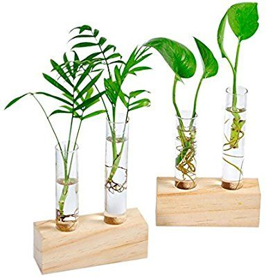 3 Types Ivolador Terrarium Container Flower Planter Hanging Glass Home Garden Decor