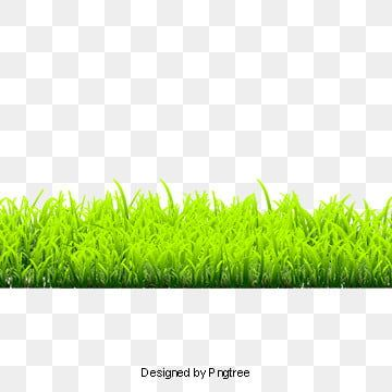 Grass Grass Clipart Lawn Png Transparent Image And Clipart For Free Download Green Grass Background Grass Clipart Grass Flower