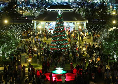 Home for the Holidays - Southlake annual tree lighting ceremony in Southlake  town Square | Lifestyle: Southlake,TX | Pinterest | Southlake town square