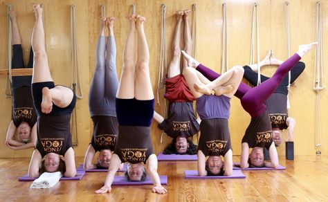 Headstand Variations with Lois Steinberg and the Iyengar Yoga Champaign-Urbana Studio Teachers