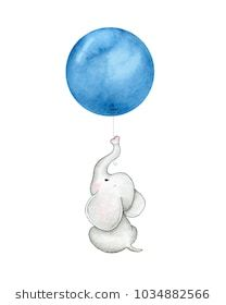 Cute baby elephant with navy blue balloone