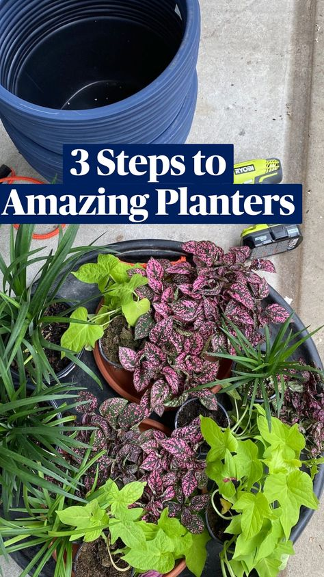 3 Steps to Amazing Planters