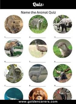 Name The Animal Quiz 2 Animal Quiz Kids Quiz Questions Animals Their Homes