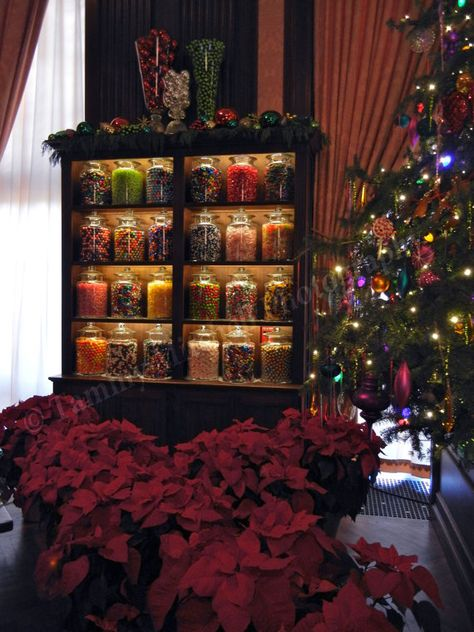 Longwood Gardens Christmas 2019.Candy Jars In Ballroom At Christmas Time At Longwood