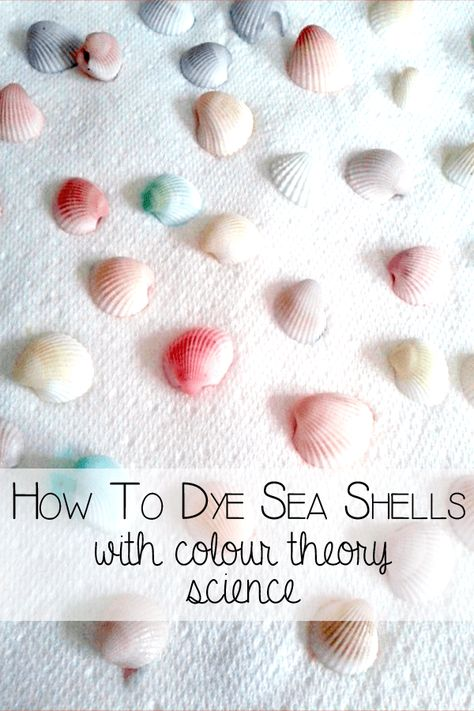 Step by step guide on how to dye sea shells for crafts. Simple to follow and even kids can do as well. #kidscrafts #seashells #howto #craftideas #rainydaymum