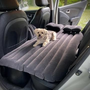 Cuddlebuddy Car Air Bed Cuddlebuddyco Air Bed Small Poodle Back Seat