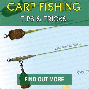 Carp Fishing Tips 2018 | Carp fishing | Carp fishing tips