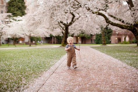 Owen University Of Washington Cherry Blossoms Family Photo Sessions Family Photoshoot Family Portrait Photographer