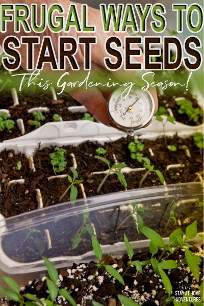 Creating A Vegetable Patch Vegetable Garden Planner Gardening