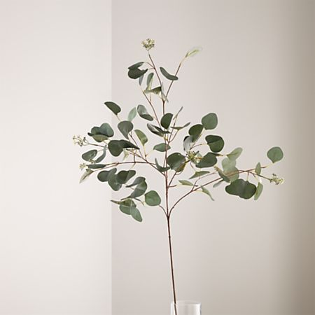 Artificial Silver Dollar Eucalyptus Stem Reviews Crate And Barrel Fake Plants Silver Dollar Eucalyptus Fake Plants Decor