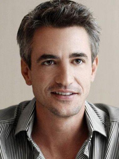 6 Remy Human Grey Straight Short Wig Hair For Men Dermot Mulroney Celebrities Celebrities Male